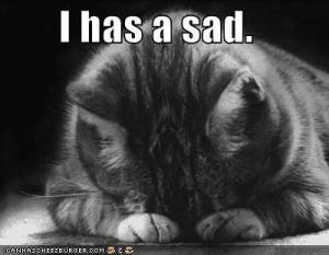 sad-cat-1